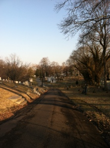 At least my one run this week took me through the gorgeous twists and turns of Bloomfield Cemetery.